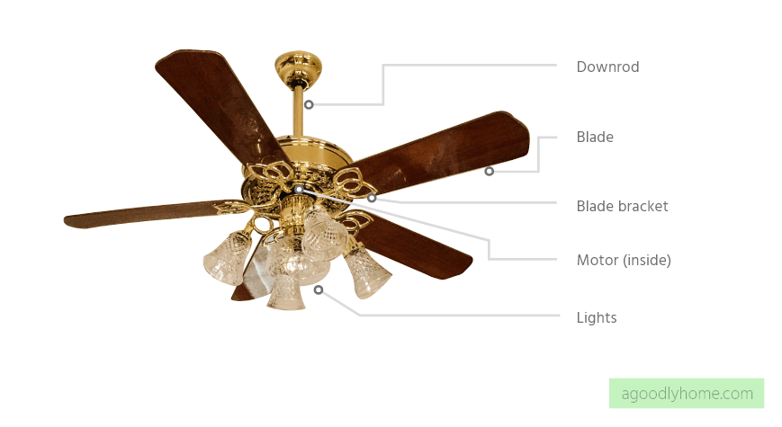 ceiling fan anatomy