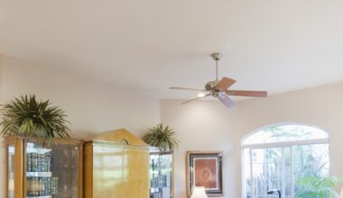 Best Ceiling Fans Without Lights