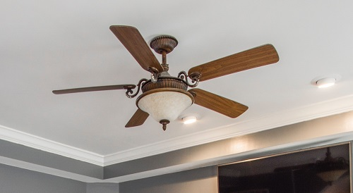5 bladed ceiling fan