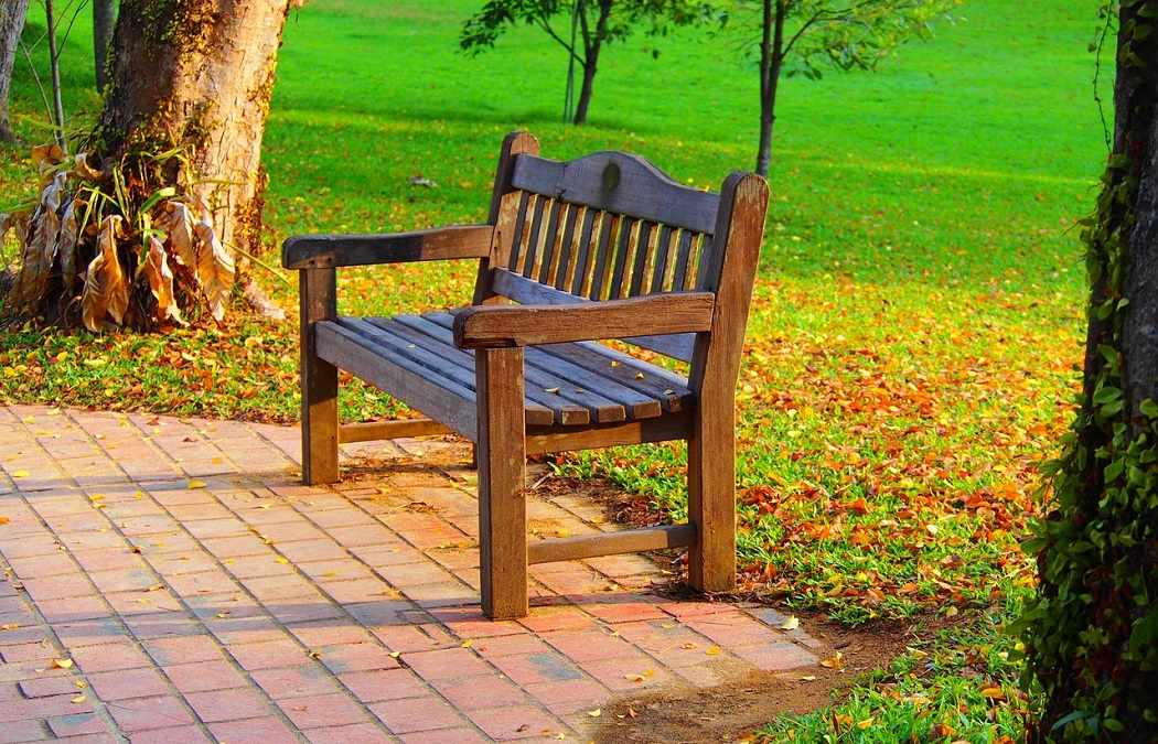 Awe Inspiring Best Outdoor Storage Benches Unbiased Reviews Camellatalisay Diy Chair Ideas Camellatalisaycom