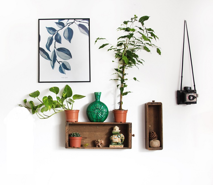 shelf and decor